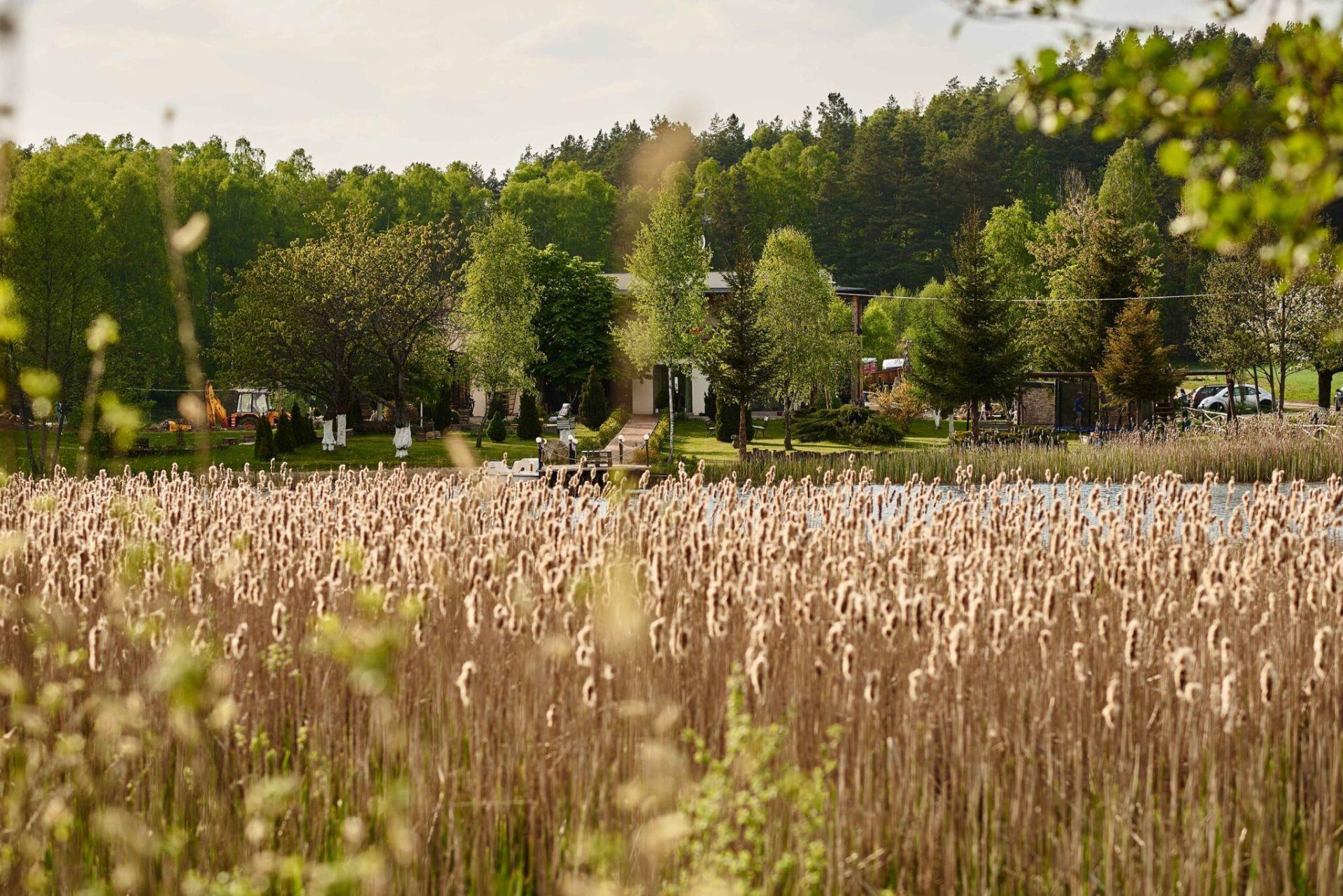 Gospodarstwo agroturystyczne Ranczo Dolidki Gwieździn
